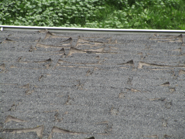 Shingles are curling and require replacement