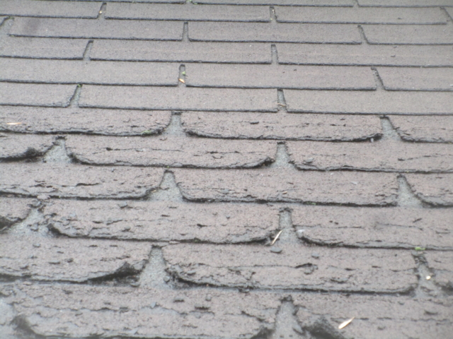 Lower shingles are damaged from Ice Damming